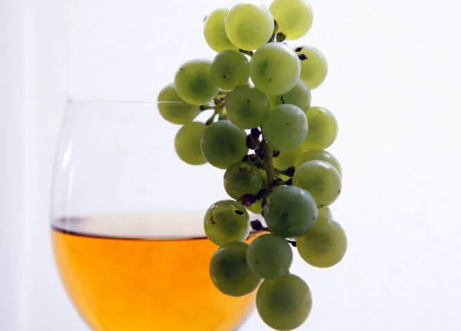 "Aceite de Semilla de Uva: Un ""Super Alimento"" Nada Saludable"