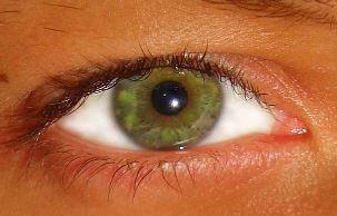 Color de Ojos verde