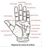 Como aprender a leer la mano