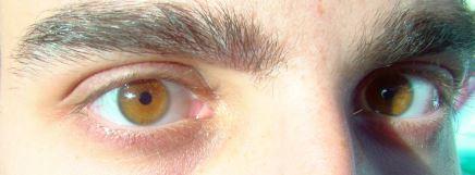 Ojos ambar