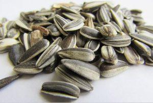 Semillas de girasol beneficios