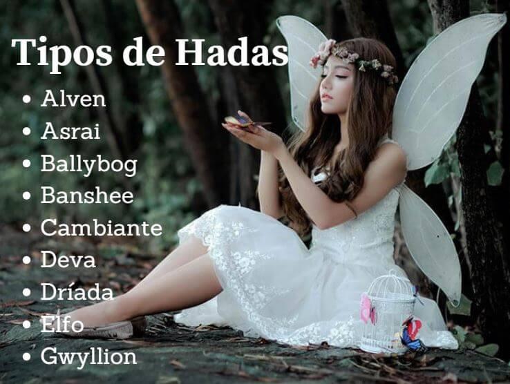 Tipos de Hadas